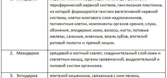 imagesdokazatelstvo-evoljutsii-stroenie-stopy-u-kagdogo-cheloveka-thumb.jpg