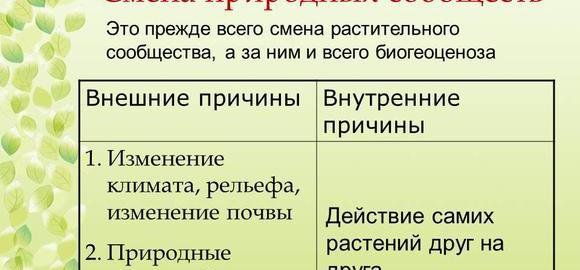 imageselementarnaja-prirodnaja-ekosistema-sushi-v-granitsah-fitotsenoza-thumb.jpg