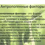 Учение академика В.И. Вернадского о биосфере