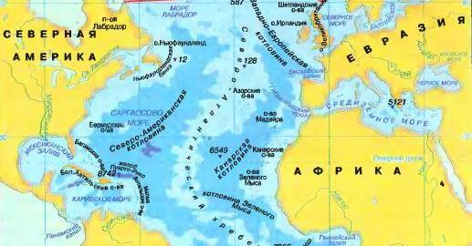 imageskakie-rastenija-est-v-atlanticheskom-okeane-vikipedija-thumb.jpg