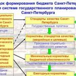Перспективный финансовый план и его роль в финансовом планировании (на примере Еврейской автономной области)