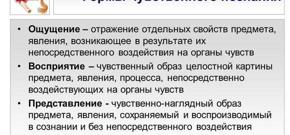 imagesnashi-predstavlenija-o-mire-javljajutsja-neposredstvennym-rezultatom-thumb.jpg