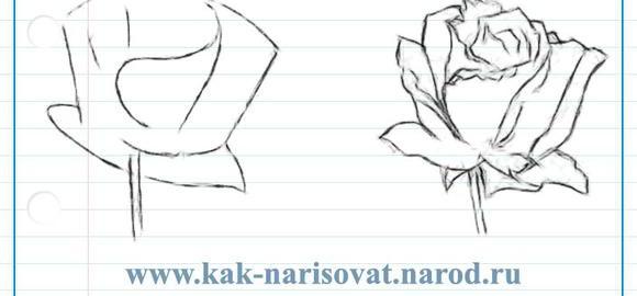 Картинки для рисования природа цветы