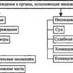 Система учреждений и органов, исполняющих уголовные наказания